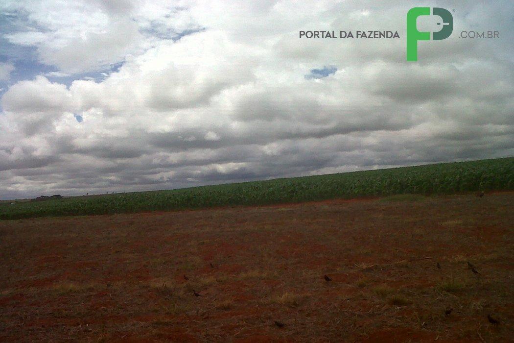 Fazenda 1,228ha em Patrocínio/MG