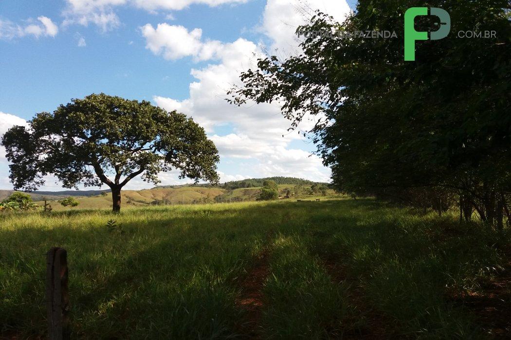 Portal da Fazenda