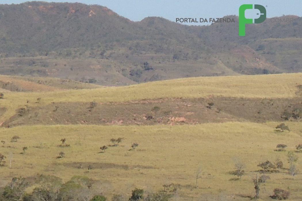 Fazenda 700ha em Presidente Olegário/MG