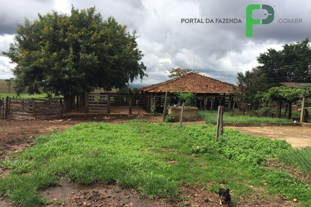 Fazenda 417ha em Paracatu/MG