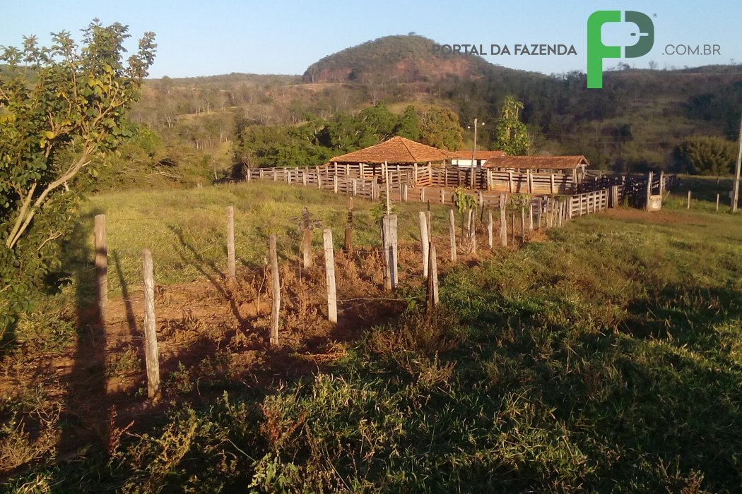 Fazenda 799ha em Presidente Oleg�rio/MG